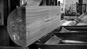 Sawing of teak wood for sculptures by Jorge Palacios